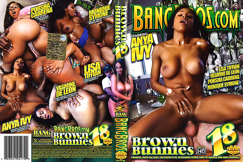 Brown Bunnies 18